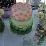 Pink and green frill cake